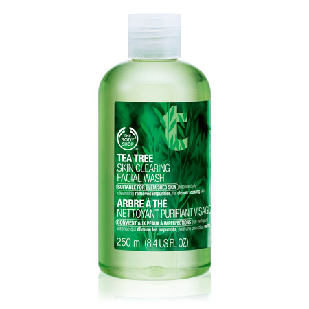 curlsandmo.com body shop tea-tree-skin-clearing-wash
